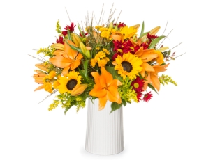 Get Well Flowers & Gifts ZER4U